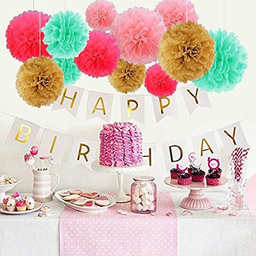 Geburtstag Dekoration, Birthday Girlande Set, 12 Seiden Papier Blumen PomPoms und 20 Quaste Girlande, 2 Dot Papier Girlande für Partei Dekorationen,Kindergeburtstag Deko - 2