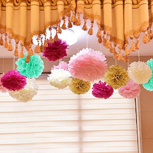 Geburtstag Dekoration, Birthday Girlande Set, 12 Seiden Papier Blumen PomPoms und 20 Quaste Girlande, 2 Dot Papier Girlande für Partei Dekorationen,Kindergeburtstag Deko - 3