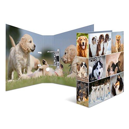 Motivordner / DIN A4 / 70mm breit / Hunde