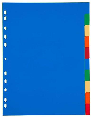 Idena Plastikregister DIN A4, 10-teilig, mehrfarbig